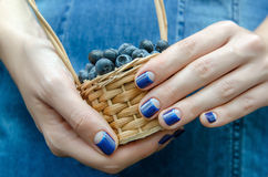 Female hands with blue nail design. Royalty Free Stock Images