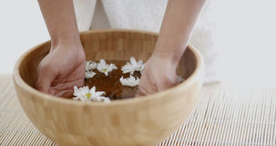 Female Hands With Bowl Of Aroma Water Stock Photography