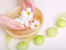 Female hands in bowl full of water. And flower Royalty Free Stock Image