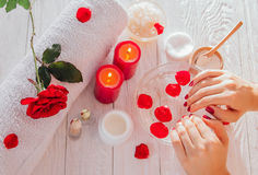 Female hands in bowl with rose water. Skincare and spa concept Royalty Free Stock Image