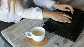 Female hands businesswoman using a laptop stock footage