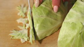 Female hands chopped cabbage on wooden board, close-up. Chopping cabbage with a knife on cutting board stock video