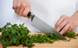 Female hands chopping fresh parsley Royalty Free Stock Photo