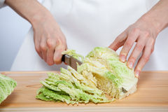 Female hands chopping savoy cabbage Royalty Free Stock Photos