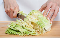 Female hands chopping savoy cabbage Stock Images