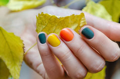 Female hands with colored fall nail design. Female hand with colored nail design holding yellow leaves Stock Photo