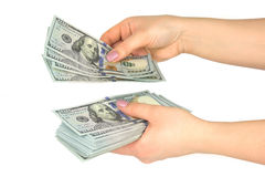 Female hands consider dollars on a white background Royalty Free Stock Image