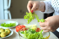 Female hands are cooking vegetable salad at the kitchen Royalty Free Stock Images