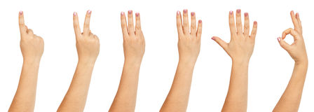 Female hands counting Royalty Free Stock Image