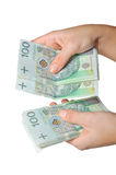 Female hands counting money royalty free stock photography