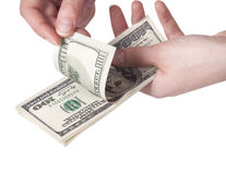 Female hands counting money Stock Image