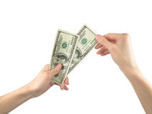 Female hands counting money dollars Stock Photos