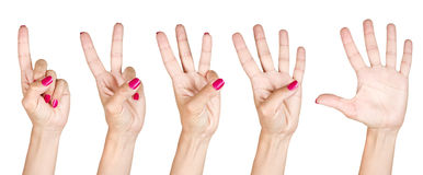 Female hands counting from one to five Stock Image