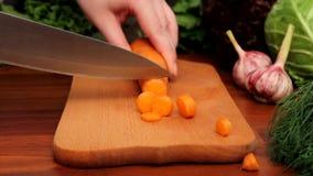 Female hands cut carrots stock video