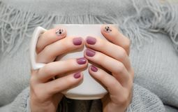 Female hands with dark pink nail design. Female hands with dark pink nail design holding white cup royalty free stock photography