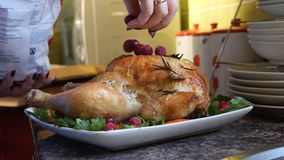 Female Hands Decorate Roasted Whole Chicken on Plate For Family Dinner.  Royalty Free Stock Photos