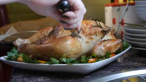 Female Hands Decorate Roasted Whole Chicken on Plate For Family Dinner.  Stock Photos