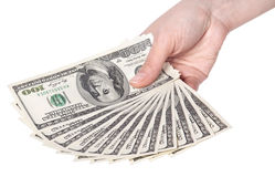 Female hands with dollars isolated on a white Stock Photography