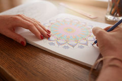 Female hands drawing in adult coloring book. Close up of female hands drawing in adult coloring book at home royalty free stock images