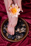 Female hands and feet Royalty Free Stock Image