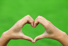 Female hands in the form of heart. Isolated on white background royalty free stock photos