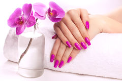 Female hands with fragrant orchid and towel. Spa Royalty Free Stock Photo