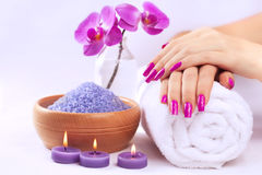 Female hands with fragrant orchid and towel. Spa Stock Image