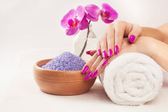 Female hands with fragrant orchid and towel. Spa Stock Images