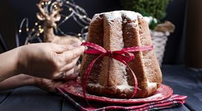 Female hands in frame and Italian Pandoro Christmas Cake with lemon cream. Decor and sweets for Christmas. A bokeh from the royalty free stock photos
