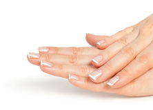 Female hands with french manicure Stock Images