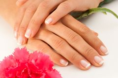 Female hands with french manicure. Stock Photo
