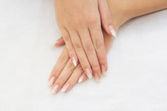 female hands with french manicure Stock Photos
