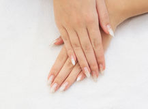 Female hands with french manicure Stock Photo