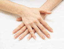 Female hands with french manicure Stock Photography