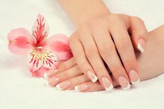 Female hands with french manicure. Beautiful female hands with french manicure decorated with flower. Manicure salon stock photos