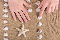 Female hands with french nails polish on sandy beach. Young girl hands with french nails polish manicure on sandy beach with shell and starfish. Manicure and royalty free stock photo