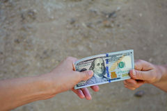 Female hands giving dollars. Stock Photos