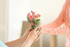 Female hands giving flowers. To old woman Royalty Free Stock Photography