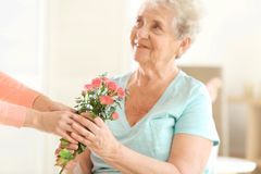 Female hands giving flowers. To old woman Royalty Free Stock Images