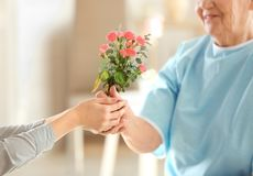 Female hands giving flowers to   woman. Female hands giving flowers to old woman Royalty Free Stock Images