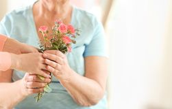 Female hands giving flowers to woman. Female hands giving flowers to old woman Royalty Free Stock Photo