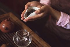 Female hands with green tea Royalty Free Stock Photography