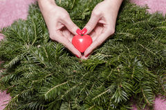 Female hands with heart on fir branches. Valentine Day. Female hands with decorative heart on background of fir branches. Valentine Day stock images