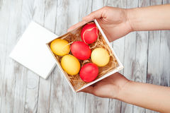 Female hands hold easter gift box with colorful eggs. Royalty Free Stock Image