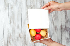 Female hands hold easter gift box with colorful eggs. Stock Image