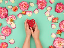 Female hands hold red heart, green  background with pink rose petals. Top view, holiday background stock photography