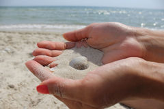 Female hands hold the sand аnd seashell close-up. Royalty Free Stock Images