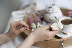 Female hands hold a white flower. Breakfast in bed. Flavored coffee. Delicate light colors. Romance. Card stock image