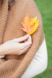 Female hands holding autumn leaves Stock Photos