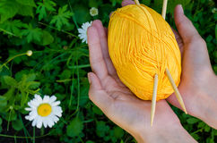 Female hands holding a ball of yellow cotton yarn and knitting needles on background green grass Stock Images